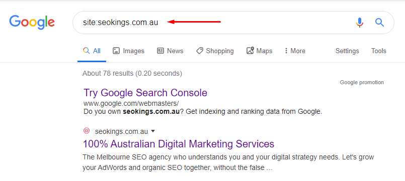 A google search of site:seokings.com.au to show what pages are included in Google's index.