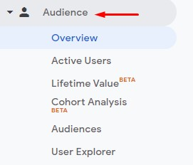 """A photo with a red arrow pointing to the """"Audience"""" tab."""